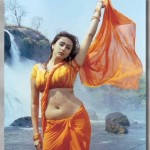 Namith shows her navel in orange saree2 150x150 hot actress gallery