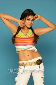 shriya in nice contume