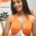 vhrchfslkbvck0rmr 150x150 Actress ASINS Ever Seen hot cleavage at Miranda Promotion