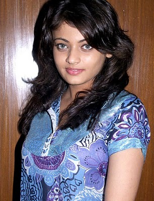 Sneha Ullal hot navel