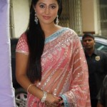 hina khan hot in saree