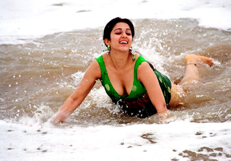 charmi-hot-sexy-photo-from-political-rowdy-2
