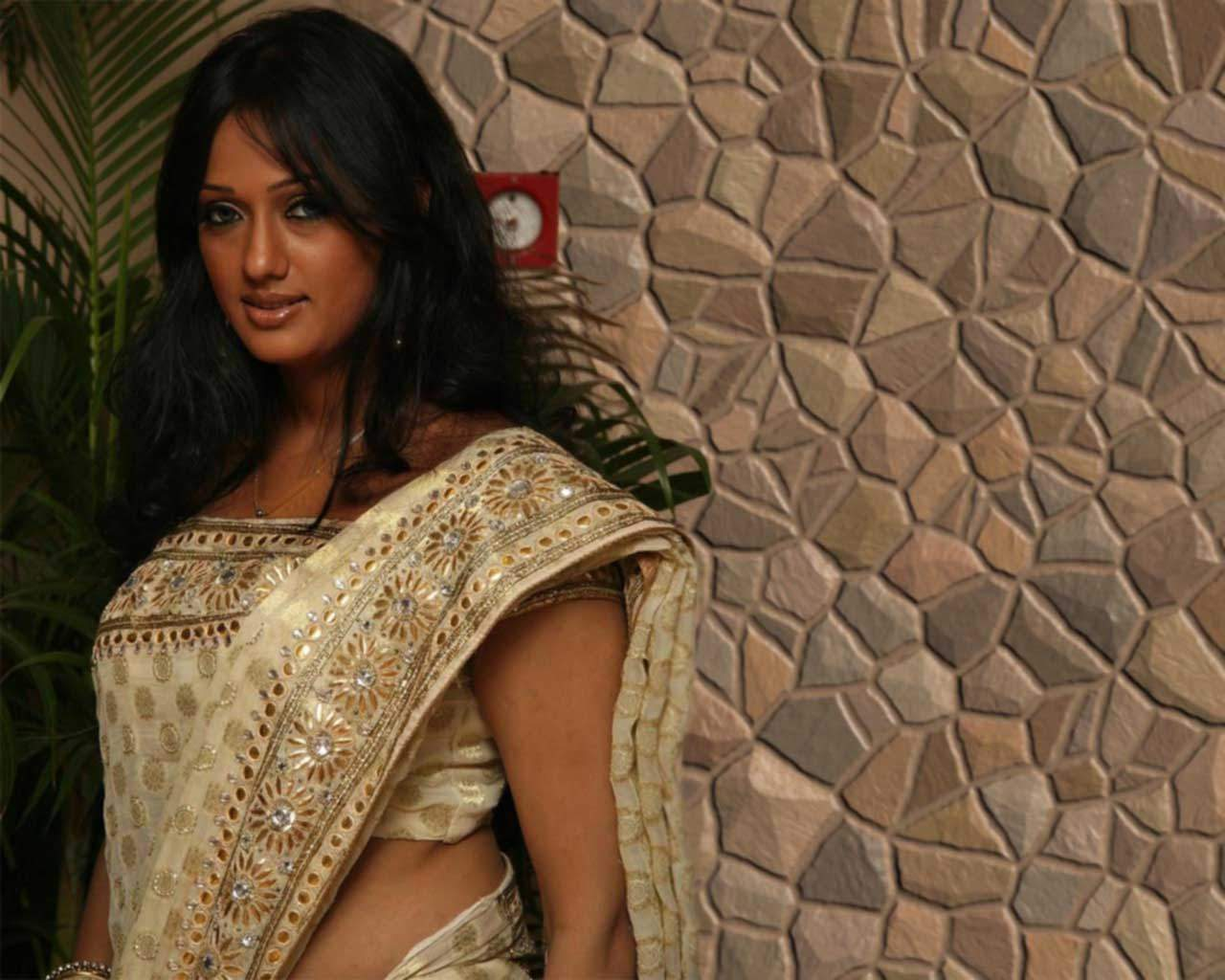 gujju-girl-Brinda-Parekh-in-saree