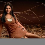 hot-nayantra-navel-gallery