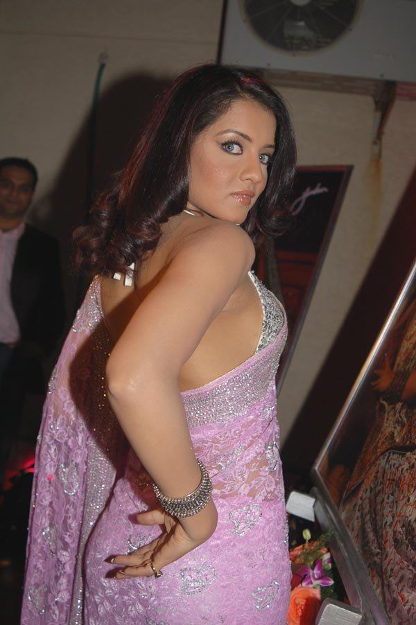Celina Jaitley in hot pose
