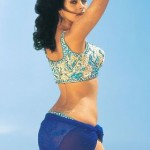 Mallika Sherawat hot navel 150x150 Mallika Sherawat hot navel sexy photos