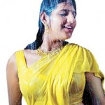 Preethi-Varma-wet photo-cleavage