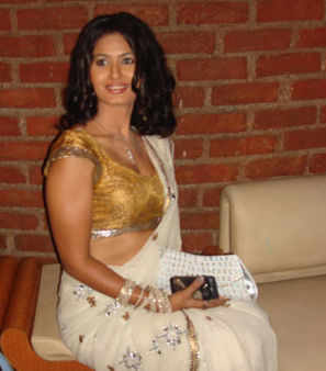 divyaa-dwivedi-sexy-hot-saree