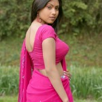 hot-images-saree-navel