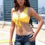 hot navel sada 150x150 hot tamil actress Sada navel photos