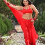 swathi-verma-hot-navel