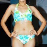Ragini dwivedi bikini photos 150x150 Ragini Dwivedi hot bikini navel photos