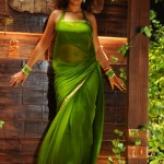 Richa Gangopadhy Hot saree navel 000 150x150 Richa Gangopadhy Hot saree navel