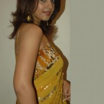Richa Gangopadhy Hot saree navel 1 150x150 Richa Gangopadhy Hot saree navel