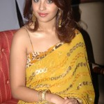 Richa Gangopadhy Hot saree navel 2 150x150 Richa Gangopadhy Hot saree navel