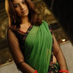 Richa Gangopadhy Hot saree navel 4 150x150 Richa Gangopadhy Hot saree navel