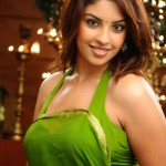 Richa Gangopadhy Hot saree navel 9087 150x150 Richa Gangopadhy Hot saree navel