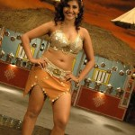 actress-kausha-hot-navel