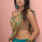 hot shraddha das saree 150x150 Hot Shraddha Das navel images