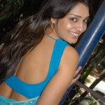 kannada-actress-nikita-hot