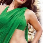 neetu-chandra-hot-saree-navel-images