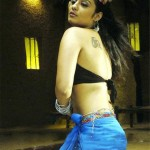 nikitha-hot navel