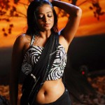 priyamani-hot-new-stiils