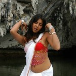 sanjana hot navel 150x150 Kannada actress Sanjana hot photo gallery