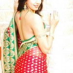 sanjana hot saree navel 150x150 Kannada actress Sanjana hot photo gallery