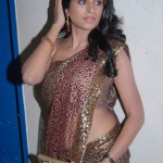 shraddha das hot saree1 150x150 Hot Shraddha Das navel images