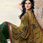 zarine khan hot saree 150x150 Zarine Khan hot bikini navel photos