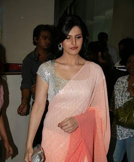 zarine-khan-hot-saree-navel