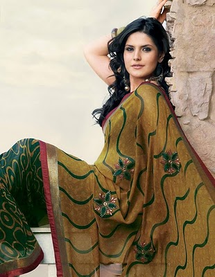 zarine-khan-hot-saree