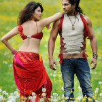Badrinath-Telugu-Movie-Hot-Stills-9