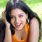 Keerthi-Chawla-Pictures-hot-cleavage