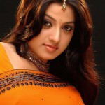 Keerthi-Chawla-cute-saree-photos