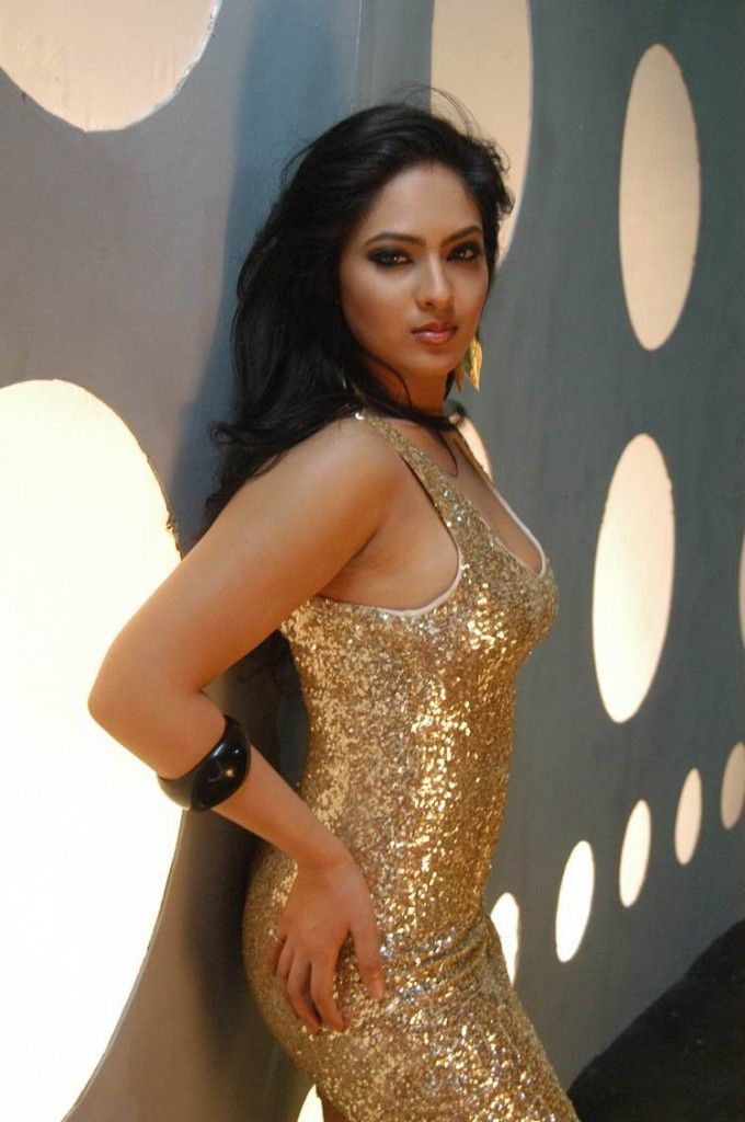 hot-telugu-actress-nikisha-patel-photos