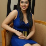 nikesha-patel-new-hot-tight-show