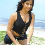 Rithika-sood-hot-cleavage