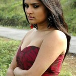 divya-spanda-hot-spicy-cleavage