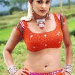 divya-spanda-hot-spicy-navel