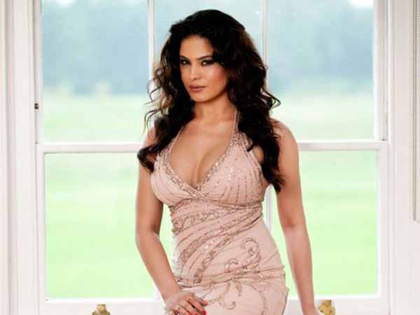 veena malik hot cleavage Veena Malik Hot Cleavage Navel Images