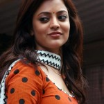 Nisha Agarwal hot photo 150x150 Nisha Agarwal Hot Photo Gallery