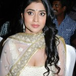Shriya-Saran-hot-rowthiram-movie