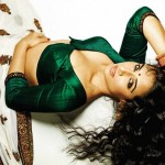 Vidya-Balan-hot-dirty-picture-saree