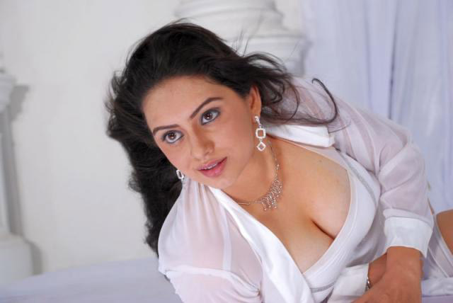 Hema-Malini-hot-cleavage-photo