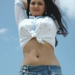 Jyothi-Krishna-hot-navel