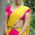 Jyothi-Krishna-hot-saree-navel