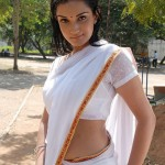 Honey-Rose-wet-saree