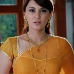 Minissha-Lamba-hot-saree